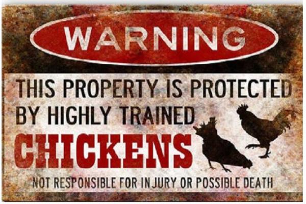 chickendecor, farmhousedecor, funnychickensign, hensign