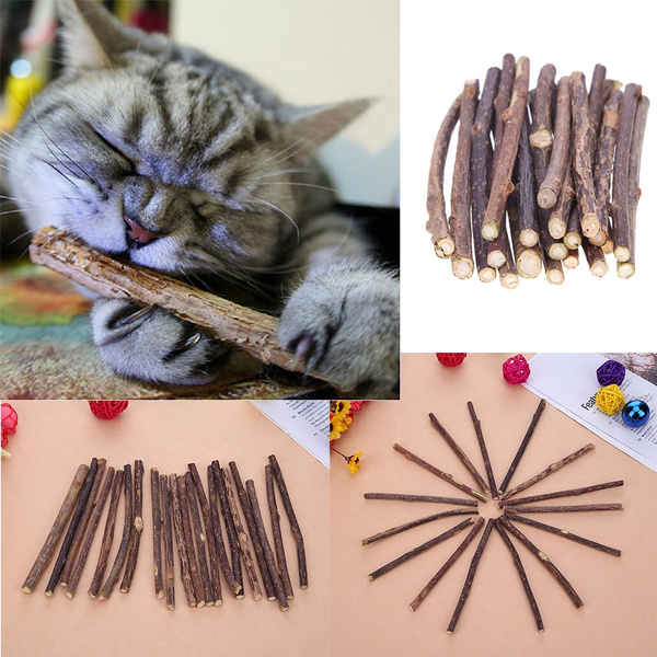 catchewingtoy, Fashion, Pets, catsnack