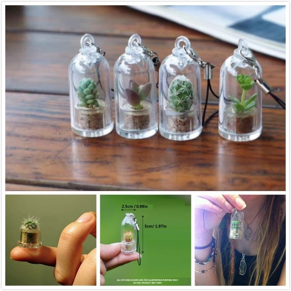 Plants, wearableliveplantpendant, Jewelry, succulentcactusglassbottle