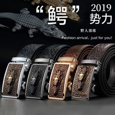 Head, Leather belt, crocodilepattern, Mens Accessories