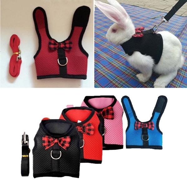 bowknot, Vest, Animal, dogharnes