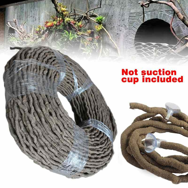 Decor, terrariumvine, vine, Pet Products