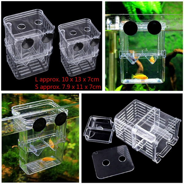 Box, acrylicbox, breederbox, Fish & Aquatic Pets
