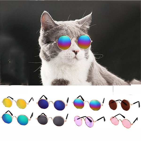 Fashion, Cat eye glasses, uvprotection, Dogs