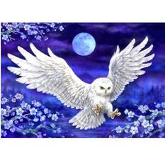 Owl, DIAMOND, Animal, muralpainting