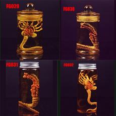 Toy, Tank, larva, Glass