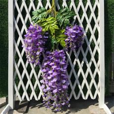 Home & Kitchen, wisteria, Flowers, Garden