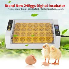 birdsincubator, hatcherymachine, automaticincubator, petaccessorie