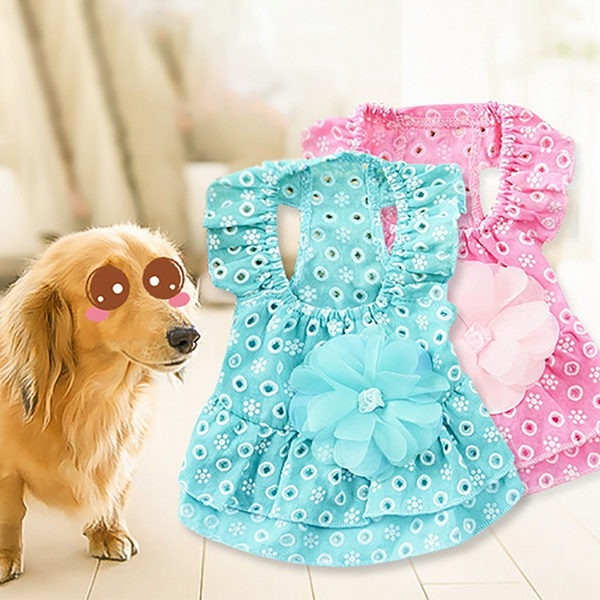 Clothes, Summer, puppy, Princess