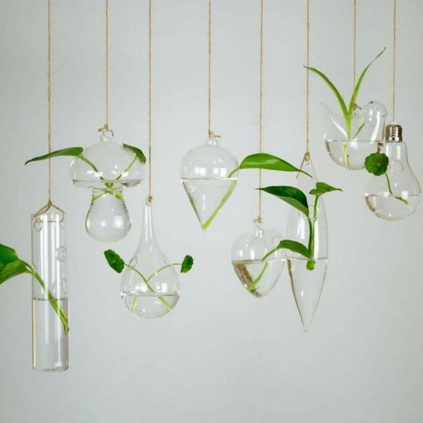 planting, Plants, Flowers, Home Decor
