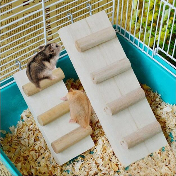 Toy, petaccessorie, stair, hamstertoy