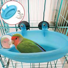 parrotbath, parrotcagetoy, PC, Pets