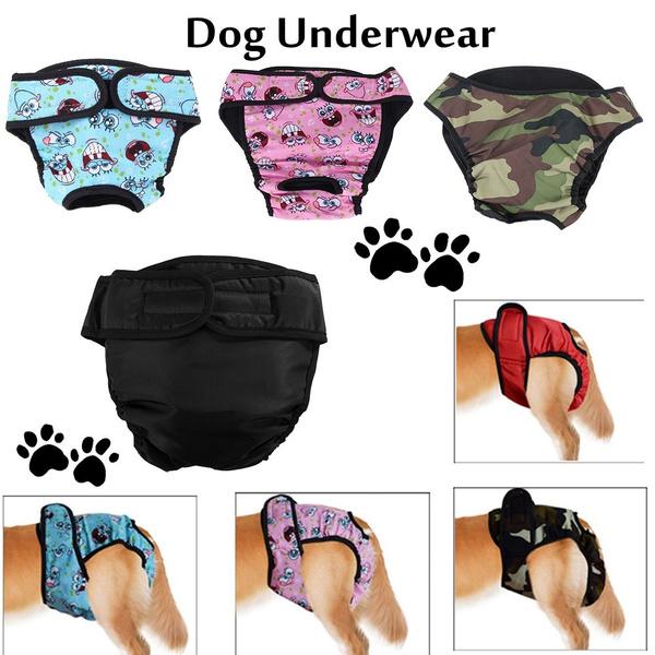 petunderwear, physiologicalpantie, dogdiapersfemale, femaledogunderwear