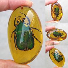 amber, Beautiful, gadgetsampgift, beetleamber