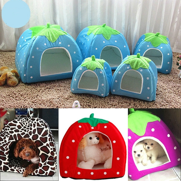 cathouse, cute, puppy, dogkennel