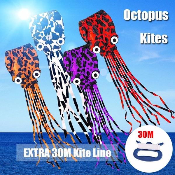 bigkite, beachkite, Outdoor, kite