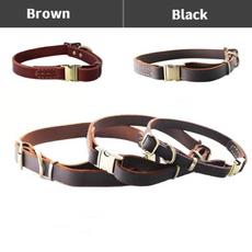 petharne, Dog Collar, Pets, dogharne