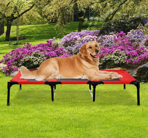 Outdoor, camping, dog houses, Pets