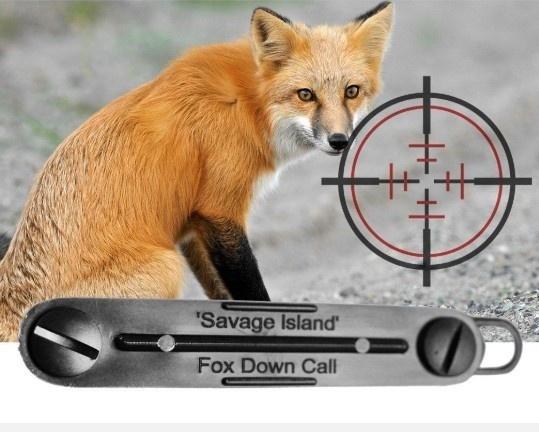 Hunting, foxdown, Fox, predator