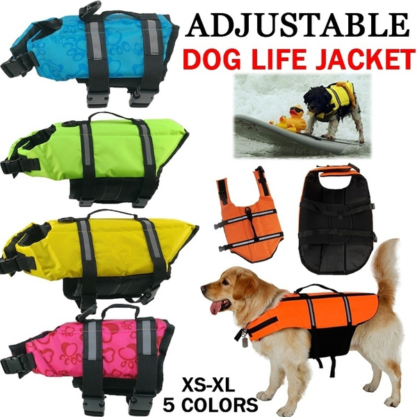 lifevestdog, Vest, lifejacketsfordog, Outdoor