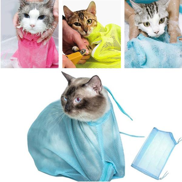 Bath, catshower, Beauty, catbath