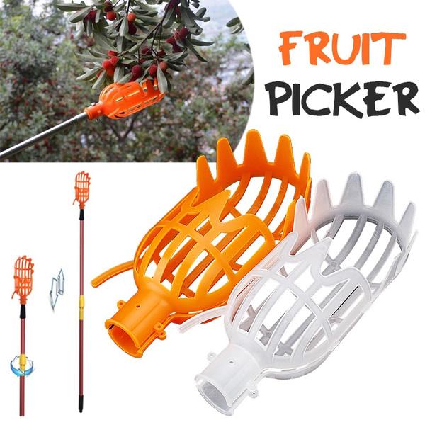 picker, Gardening, orchard, fruitpickercatcher