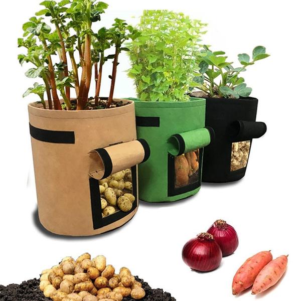 Plants, plantbag, Gardening, Garden
