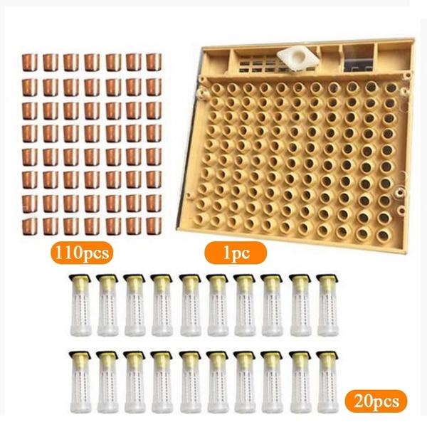Box, beecagecup, beekeepingequipment, queenbeecup