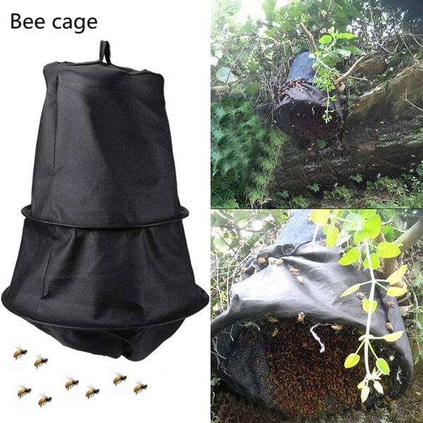 beetrap, beekeeping, beekeepingequipment, Tool