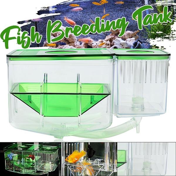 aquariumaccessorie, Box, aquariumbox, Tank