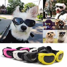 Fashion, eye, puppy, Waterproof