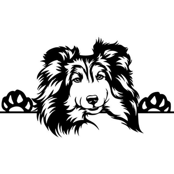 Car Sticker, puppy, Home Decor, shetlandsheepdog