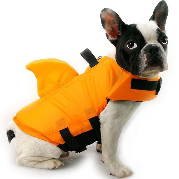 Summer, dogswimmingjacket, Fashion, Swimming