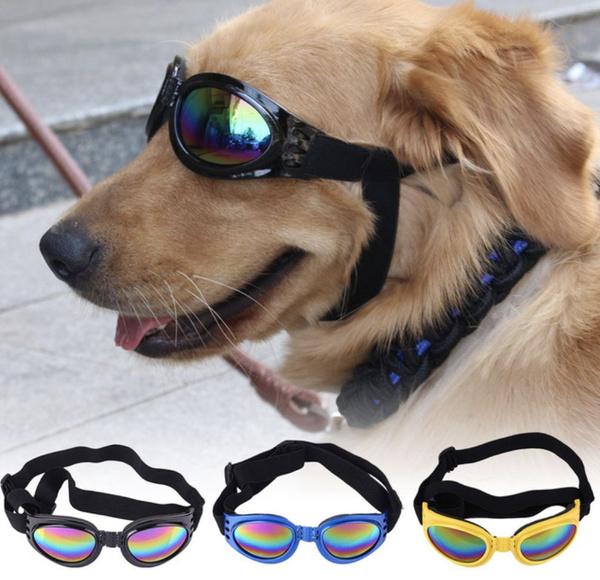 Foldable, Medium, Waterproof, Pets