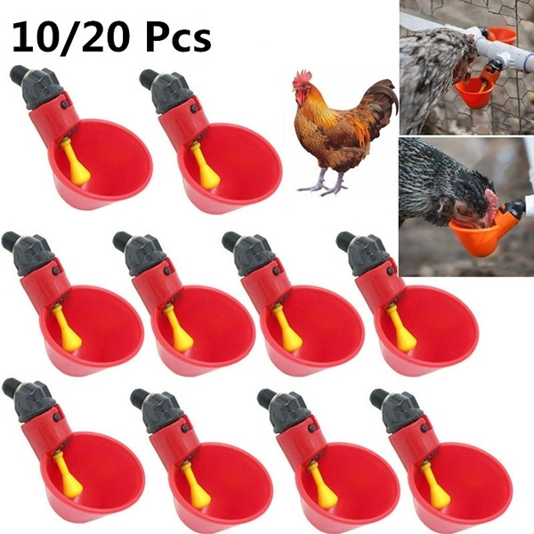 pigeondrinker, chickendrinker, poultrywaterdrinkingcup, waterdrinker