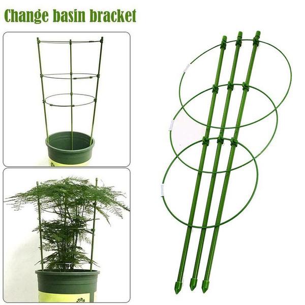 Plants, Flowers, ringcage, plantcage