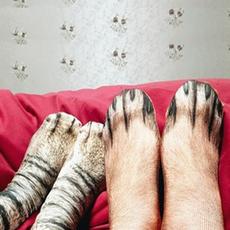 Summer, Cotton Socks, Socks, animalfeet