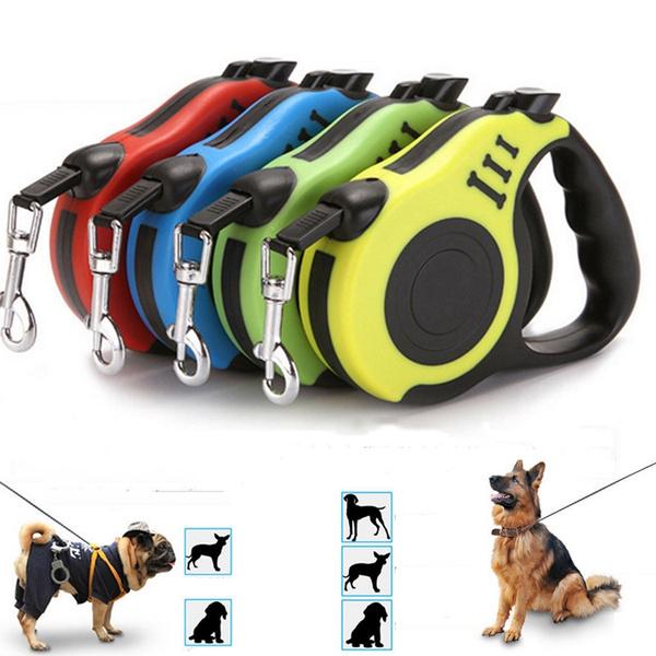 puppy, dogleadingleash, petleashrope, tractionleash