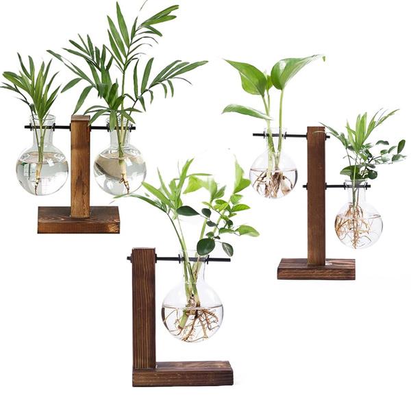 Bonsai, Decor, Flowers, terrariumvase