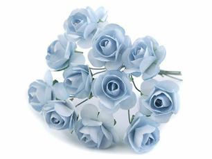 blueforgetmenotflower, forgetmenotblueflower, forgetmenotplant, plantforgetmenot