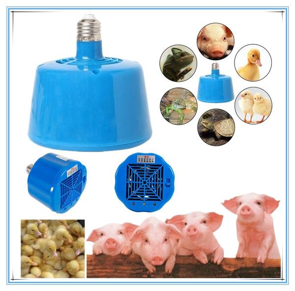 heatinglamp, thermostat, Interior Design, Lamp