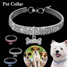Collar, Medium, Dog Collar, leashfordog