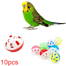 toyball, cattoy, Toy, Parrot