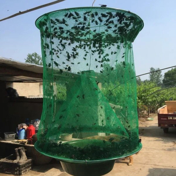 flytrapcatcher, pestcatchingcage, capturetrapingbug, catchtrap