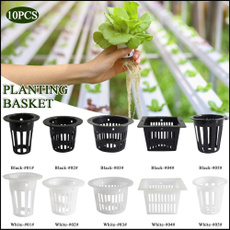 planting, Plants, Flowers, gardensupplie