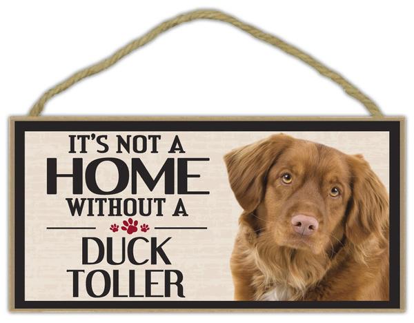 gordonsetter, ducktoller, Home & Living, Dogs
