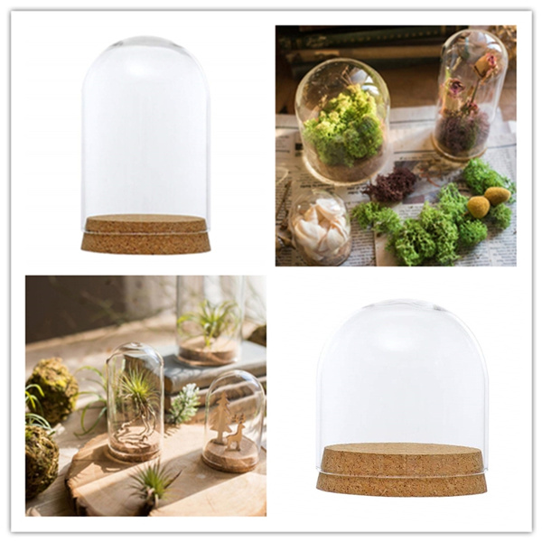 Medium, glassclochebelljar, Bell, Cover