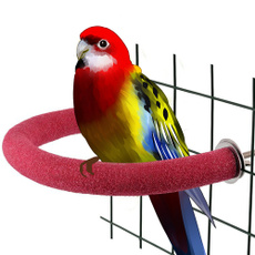 cagestand, Toy, Parrot, Pets