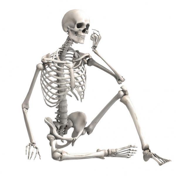 ghost, Skeleton, skull, partydecor