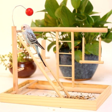 birdgrindingexercisetoy, birdswinglandparadisemodel, climbingladderstandswing, Stand